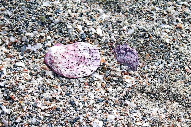 La vacanza in Salento? Falla a Lido Marini